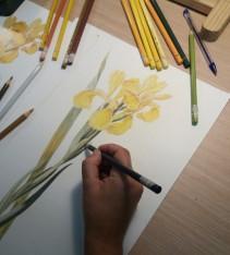 Lápices de colores, de Marina